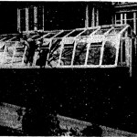 Greenhouse at 100 West Rosemont Avenue, 1954